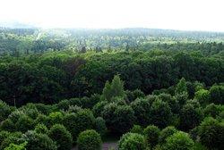 Природа Трускавца