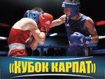 Соревнования по боксу в Трускавце